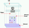 Chromatography tank.png