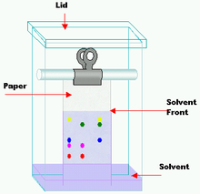 Paper chromatography wikipedia for Liquid template filters