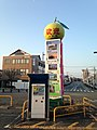 Citrus grandis in front of Yatsushiro Station.jpg