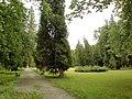 City park - panoramio - pepanos (1).jpg