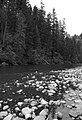Clackamas Wild and Scenic River (27727563070).jpg