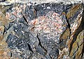 Clast-rich impact pseudotachylite (Sudbury Breccia, Paleoproterozoic, 1.85 Ga; Windy Lake Northwest roadcut, Sudbury Impact Structure, Ontario, Canada) 22 (46822836235).jpg