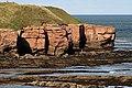 Cliffs at Magdalene Fields - geograph.org.uk - 1534024.jpg