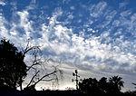 Clouds 730PM 52214 (14225750636).jpg