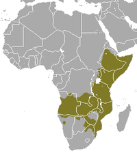 Common Dwarf Mongoose area.png