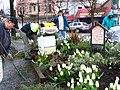 Community gardening, East Vancouver.jpg