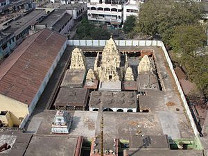 Ksheerarama - Temple Complex as seen from the Main temple tower.