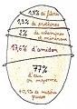 Composition d'une pomme de terre.jpg