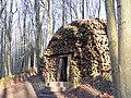 Coppice Cloud Chamber in King's wood - geograph.org.uk - 1092976.jpg