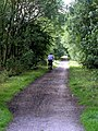 Cyclist on the old Hull to Hornsea Trackbed - geograph.org.uk - 902235.jpg