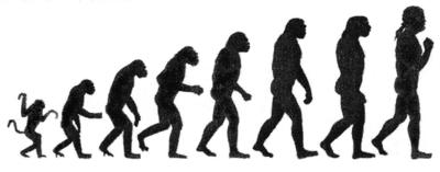 Evolutionary preparedness theory