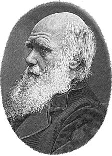 charles darwin's theory of evolution