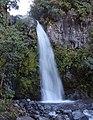 Dawson Falls, New Zealand, February 2016 09.JPG
