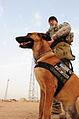 Defense.gov News Photo 090413-A-5049R-002.jpg