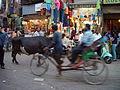 Delhi velotaxi.jpg