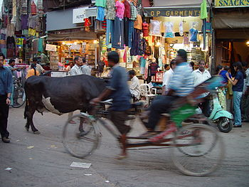 English: Velotaxi and cow in the Main Bazaar o...