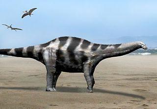 <i>Demandasaurus</i> genus of rebbachisaurid sauropod (fossil)
