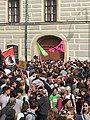 Demo Rücktritt Jetzt! - Heinz-Christian Strache Ibiza-Affäre 18. Mai 2019 7 (Wien).jpg