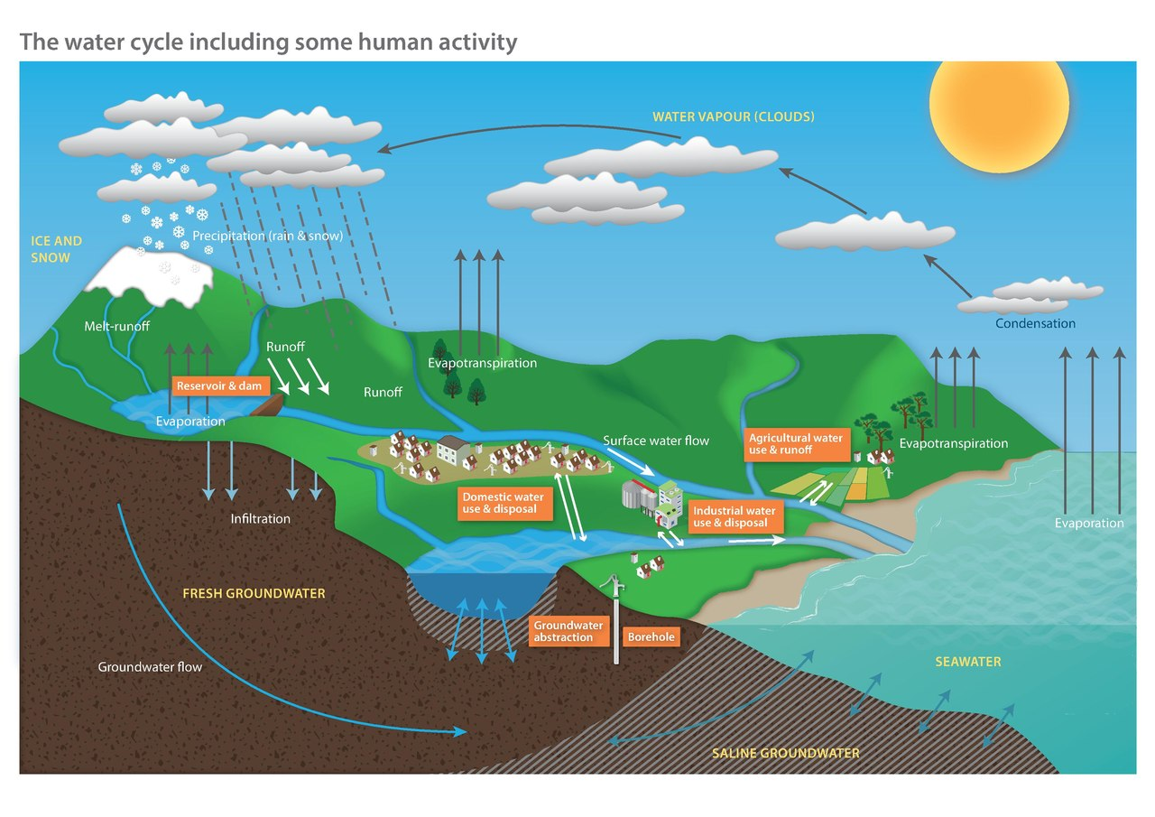 File:Diagram of the water cycle including some human activity.pdf -  Wikimedia CommonsWikimedia Commons