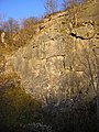 Diamond Wall, Trowbarrow Quarry - geograph.org.uk - 1601796.jpg