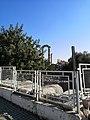 Didyma Antik Kenti 47.jpg