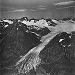 Dingelstadt Glacier, valley glacier terminus with firn line in the background, September 4, 1977 (GLACIERS 6467).jpg