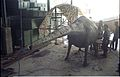 Diplodocus in Making - Dinosaurs Alive Exhibition - NCSM - Calcutta 1995 452.JPG