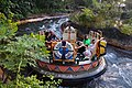 Disney-Animal-Kingdom-Kali-River-Ride-8319.jpg
