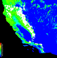 Distribution of Jeffrey pine trees as predicted by Maxent modeling.png