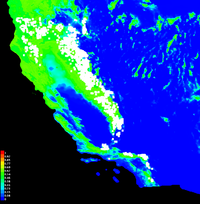 Distribution of Jeffrey pine trees as predicted by Maxent modeling