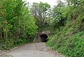 Disused A35 Tunnel - geograph.org.uk - 413761.jpg