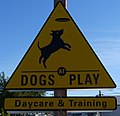 Dogs at Play Sign in Eugene, Oregon.jpg