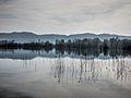 Dojran Lake 218.jpg