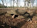 Dolmen de Chan da Arquiña (5666454416).jpg