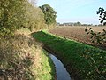Drainage ditch, off Wood Hall Lane, Womerseley. - geograph.org.uk - 274552.jpg