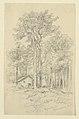 Drawing, Sketches. Sugar Camp, Greensboro, VT., August 26, 1916 (CH 18368911).jpg