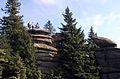 Dreisessel bayerwald.jpg