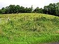Drumskew Townland - geograph.org.uk - 487352.jpg