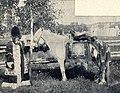 E. Pfitzenmayer, Sibirische Rauchwaren (1908) Reiche Jakutin im Sommerfestkostüm.jpg