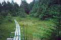 EAST COAST TRAIL, AQUEFORT, 1ST AUGUST 2002 Port Hope Simpson Off The Beaten Path Llewelyn Pritchard.jpg