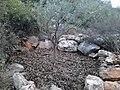 Ekali, Greece - panoramio (7).jpg