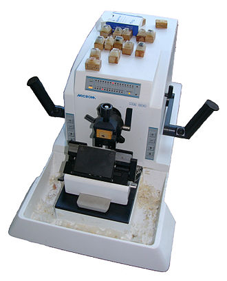 Gibbs isotherm - electrical microtome Microm HM 200.