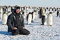 Emperor Penguins & Chris Michel (15885637606).jpg