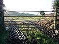 Entrance to muddy field - geograph.org.uk - 669830.jpg