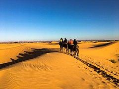 Erg Chebbi, Sahara Desert, Morocco, 摩洛哥 - 49669558287.jpg