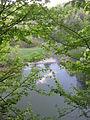 Eschelbronn Naturschutzgebiet Kallenberg 13.JPG