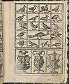 Essempio di recammi, page 12 (recto) MET DP364585.jpg