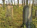 Evangelický hřbitov ve Strašnicích 85.jpg