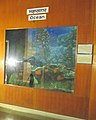 Exhibit of oceans at Regional Museum of Natural History,Bhopal,India.jpg