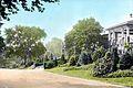 Fairmount Park – Philadelphia – Coniferous Planting (5168275840).jpg